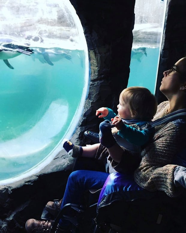image of parent in wheelchair with child on lap viewing a fish in a large tank